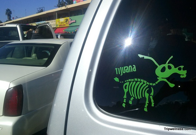 driving zombie tijuana. healthy commute