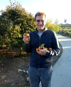 Dave Persimmon