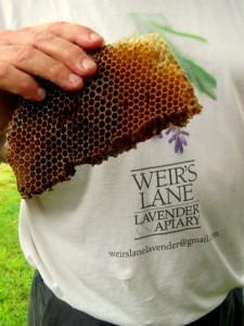 Weir honeycomb