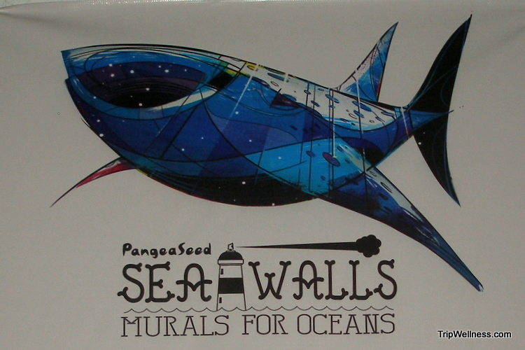 sea walls mural, whale shark, isla mujeres, trip wellness