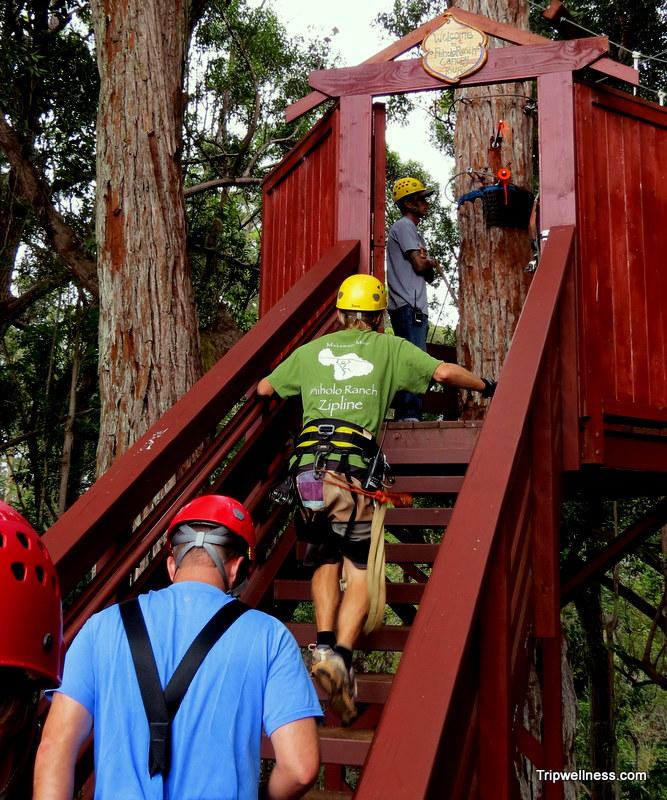 zipline adventures, trip wellness, piiholo zipline
