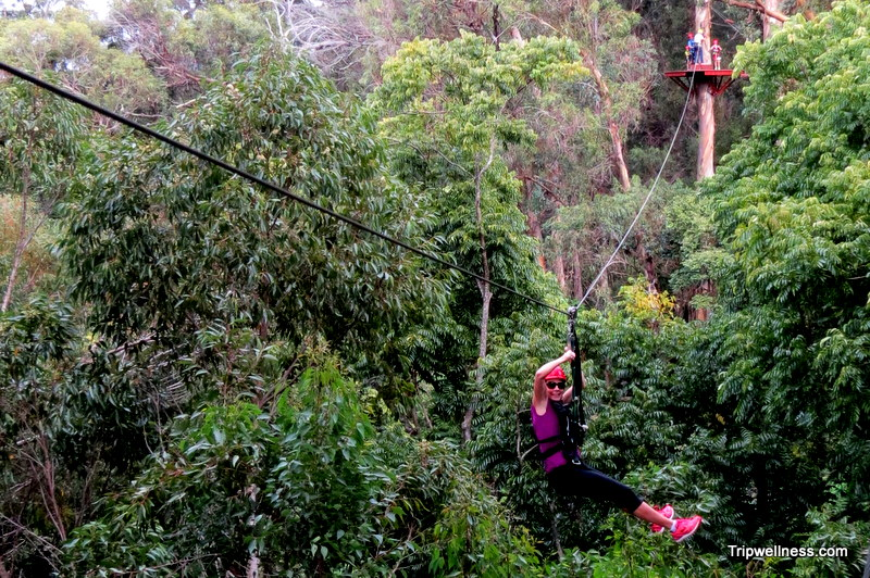 Zipline adventures in Maui's Upcountry