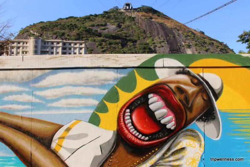 getting around rio de janeiro, trip wellness