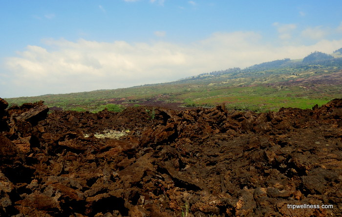 lava field, Makena, Maui South Shore, Trip Wellness