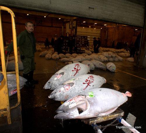 What to do in Tokyo, Tsujiki fish market, Trip wellness, Tuna Auction