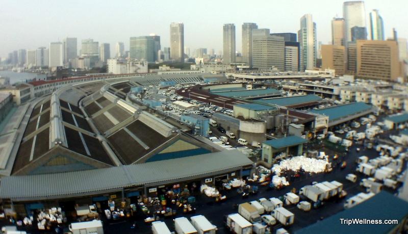 What to do in Tokyo – Visit Tsujiki Fish Market