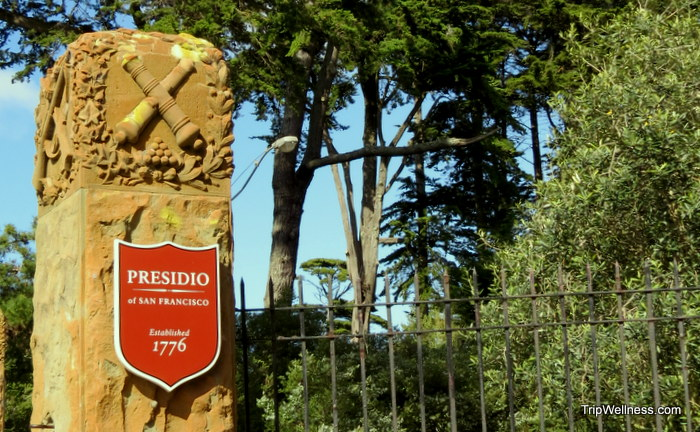 Presidio, Exploring San Francisco, trip wellness