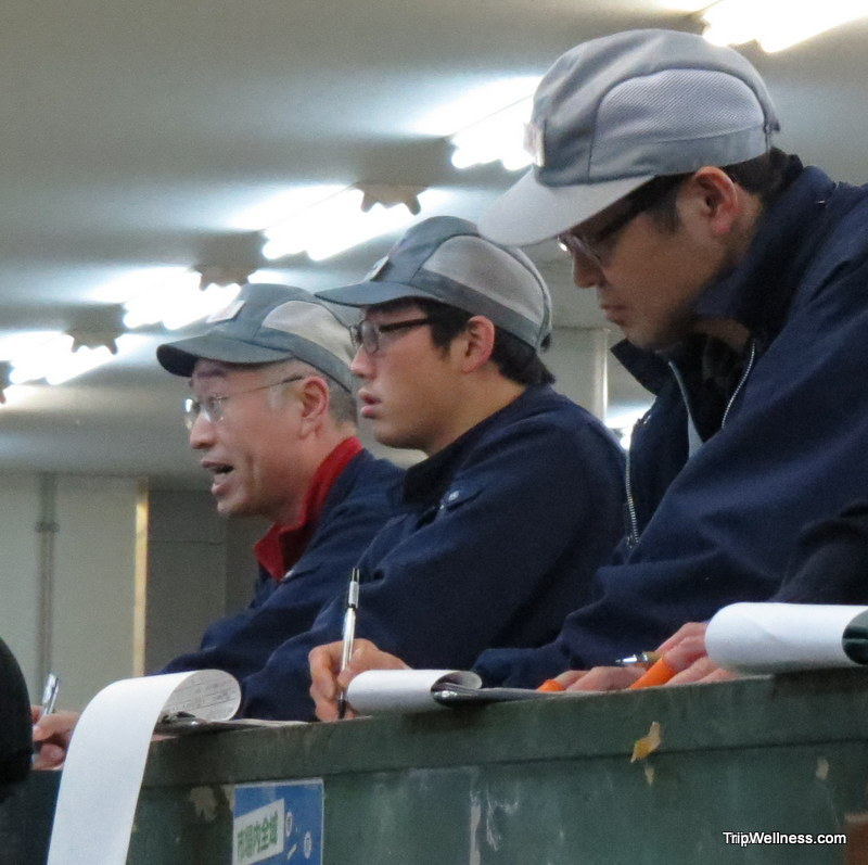 What to do in Tokyo, Tsujiki fish market, Trip wellness, auction