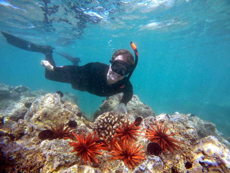 Hawaii, Snorkeling Lanai, Trip Wellness
