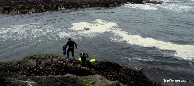 Free diving for wild Abalone near Mendocino, tripwellness