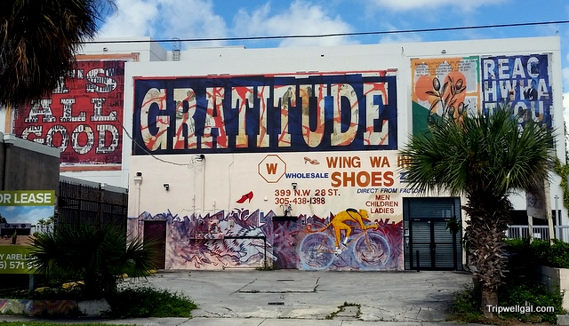 Peter Tunney murals in the Wynwood District