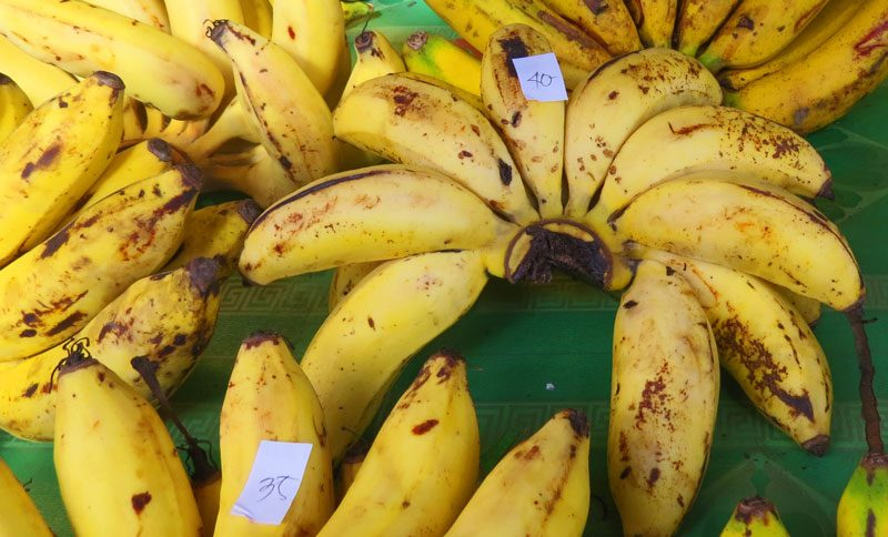 Filipno foods include small, sweet bananas