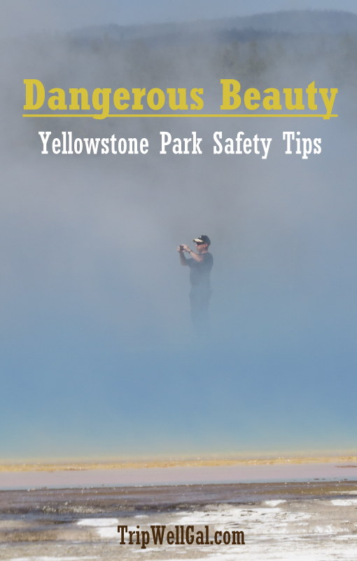 Yellowstone park dangerous beauty pin.