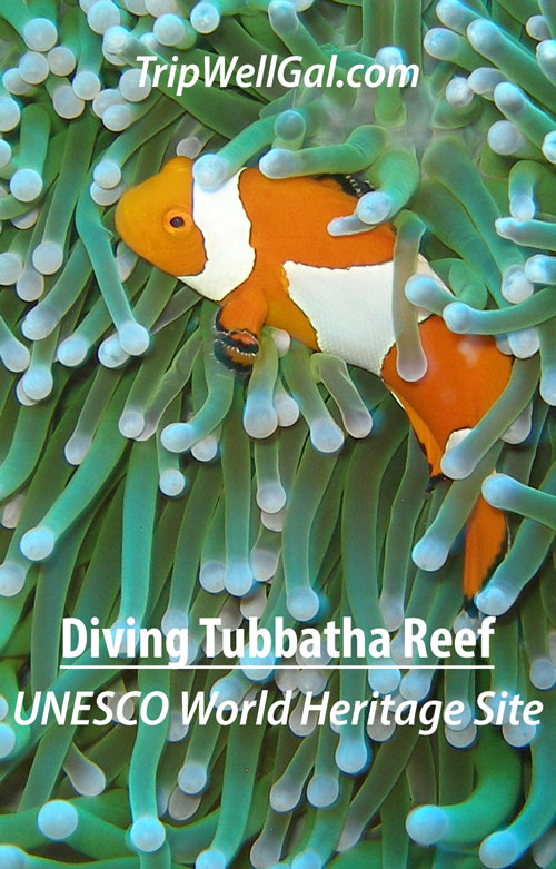 UNESCO World Heritage Site pin