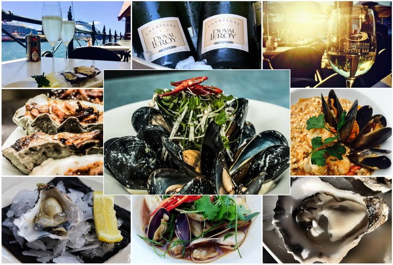 Sydney Cove Oyster Bar for fine seafood in Sydney
