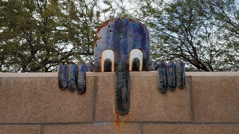Ocotillo wells nose sign