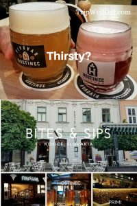 Things to do in Kosice when thirsty and hungry Pins