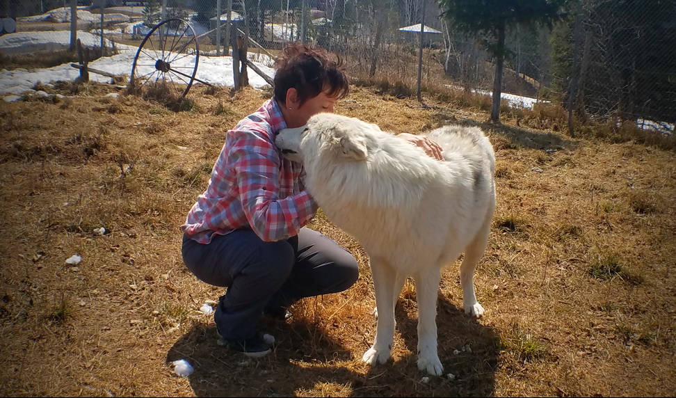 Seven reasons for a farm vacation in Northern Quebec