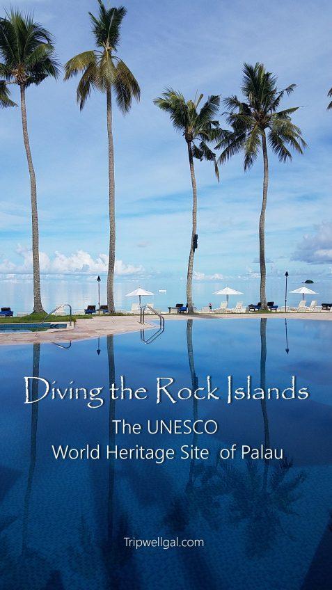 Diving Palau pin 2