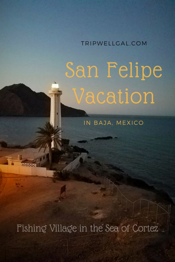 Venture south of the border for a San Felipe Vacation Pin
