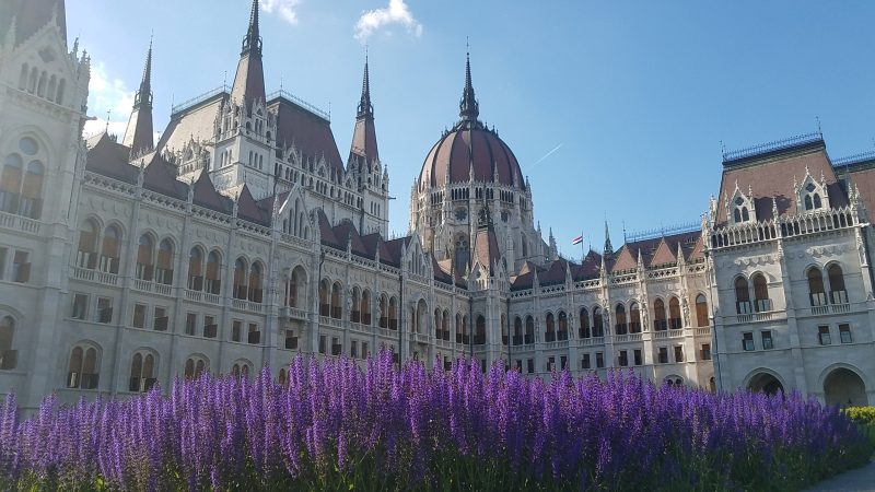 Hungarian Parliament in springtime