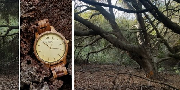 Into the woods with a Jord wooden watch