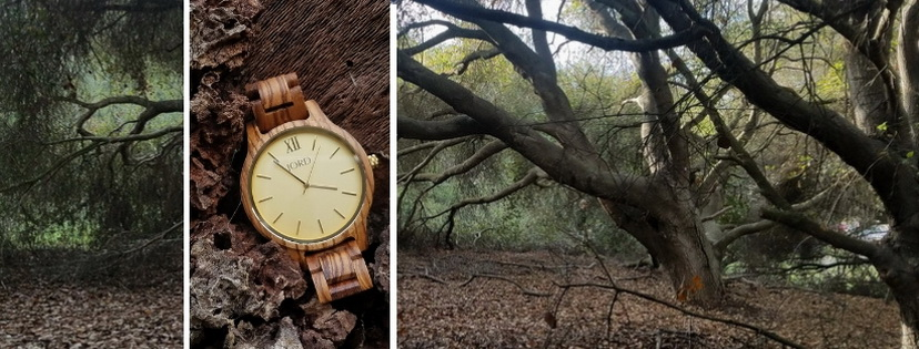 Jord wooden watch in the woods