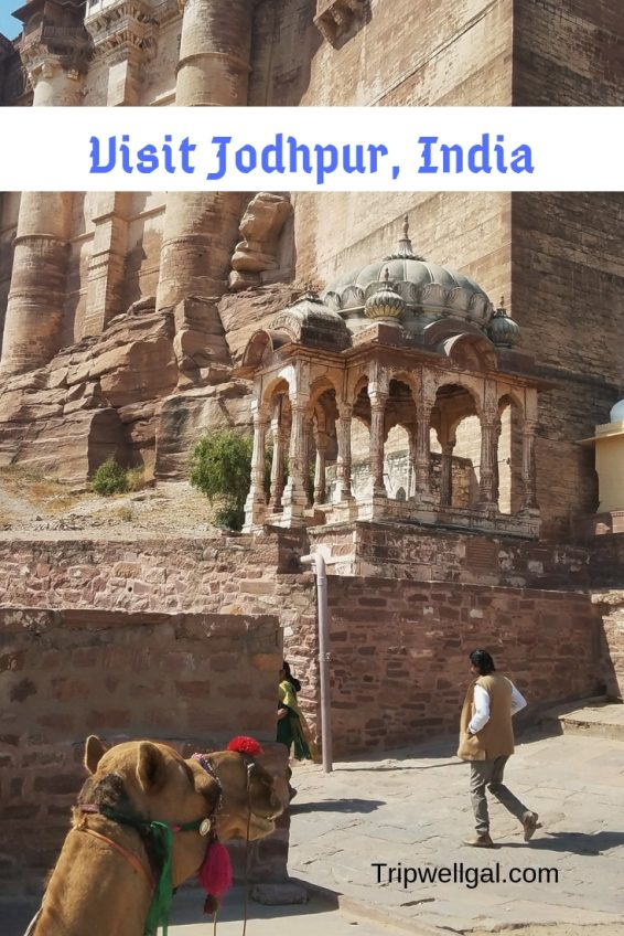 Jodhpur Fort in India Pin