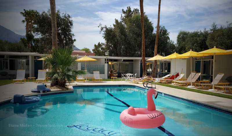 Monkey tree hotel one of the classic Palm Springs small inns