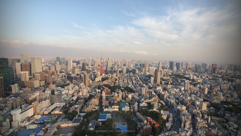 DAytime view from Rappongi Observatory in the Mori Building