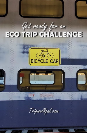 eco trip challenge pin for train travelers