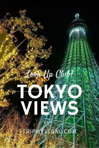 Where to find must see Tokyo Views Pin