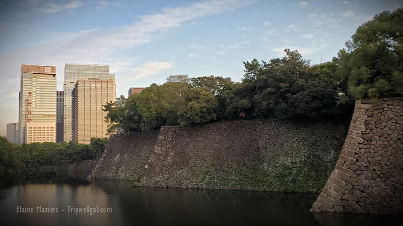 The Imperial Palace moat with Ginza towers beyond