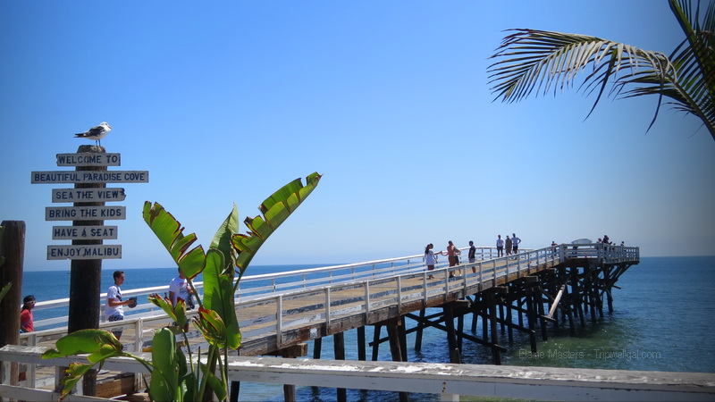 Pull over to walk the pier and enjoy Paradise Cove north of Malibu on your driving holiday.