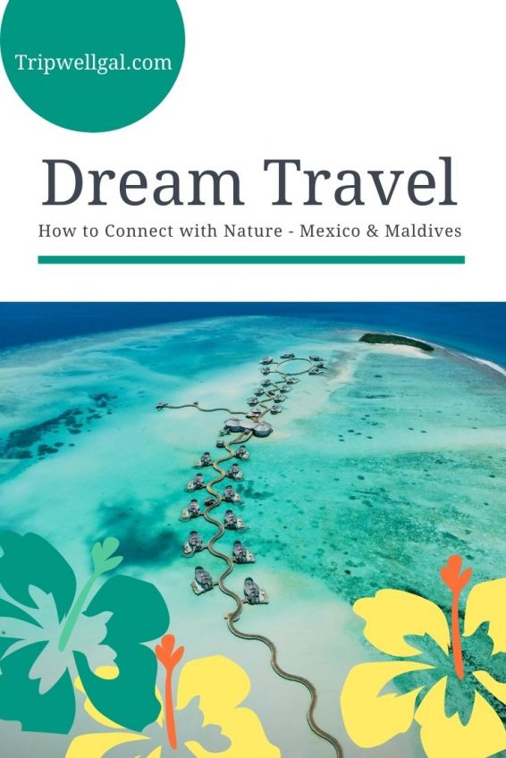 How to connect with nature through dream travel pin