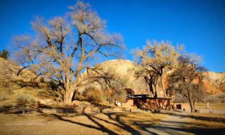 Dare to plan your travel dream – Transformative Travel in New Mexico