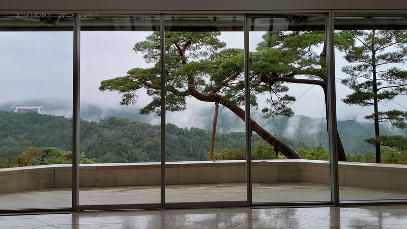 View from the central lobby of the Miho Museum