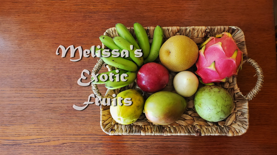 Cheer Homebound Travelers with Melissa's Exotic Fruit Basket