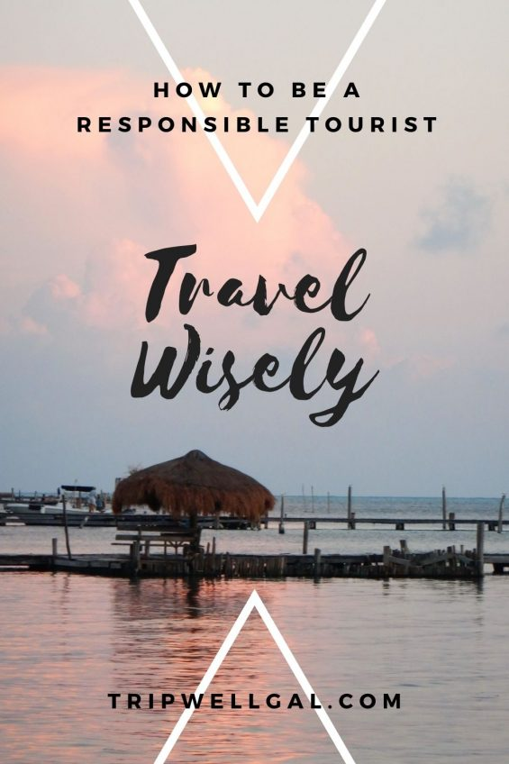 Travel wisely as a responsible tourist pin