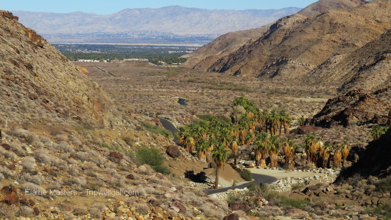 View of the Palm Springs basin from Palm Canyon