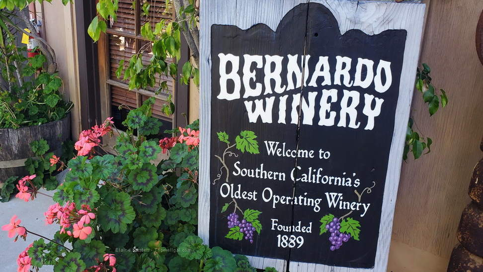 Why is the Bernardo Winery in San Diego Such a Secret?