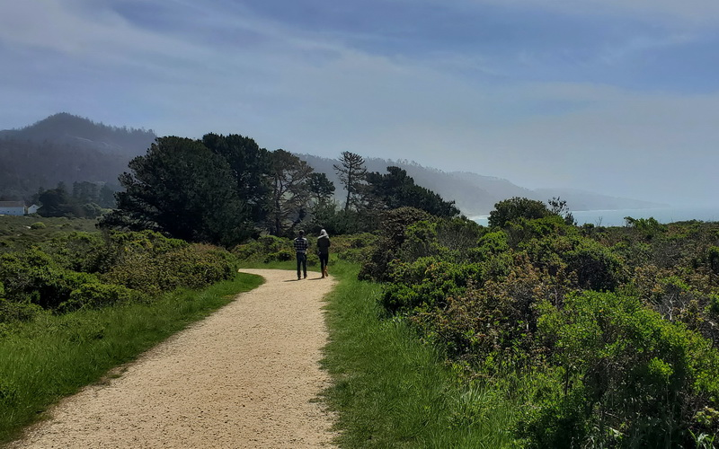 Trail walk in Ano Nuevo State Park