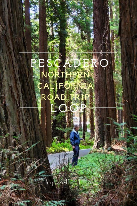 Pescadero Northern California Road Trip Pin 2
