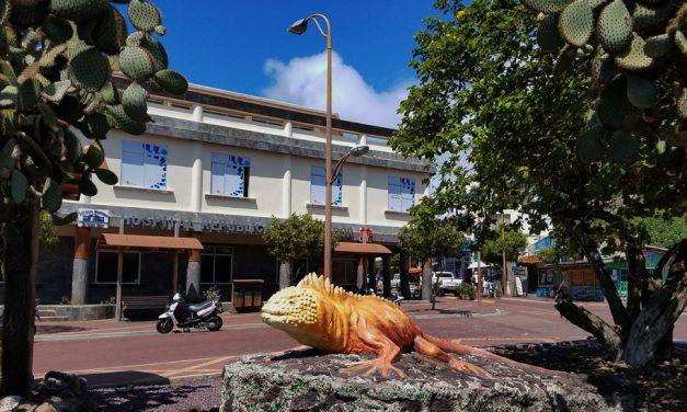 How to Make Santa Cruz Island Galapagos Your Vacation Base